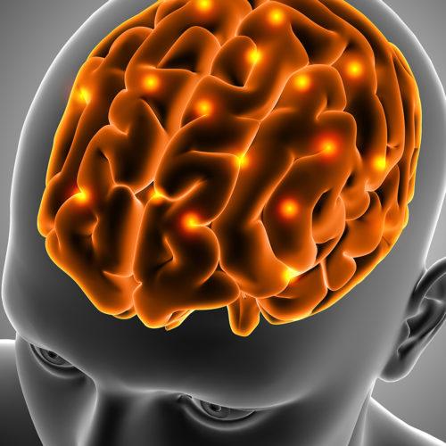 Cérebro, pensamentos rápido e lento